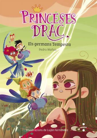 Princeses Drac 5: Els germans Tempesta