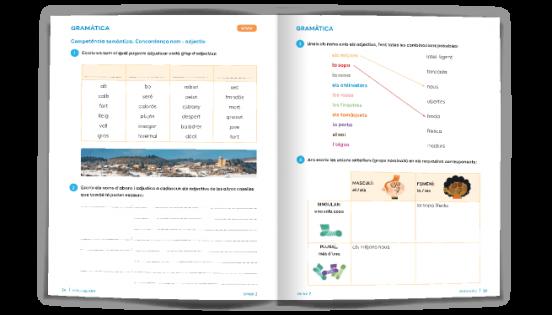 Pàgina exemple de Gramàtica - Batecs de llengua